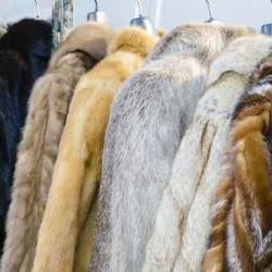 LAVAGGIO PELLI E PELLICCE--Grazie a selezionati partner, siamo in grado di riconsegnarti pelli come nuove, anche da ritingere e pellicce soffici e vaporose.